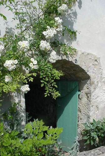 open-door-photo2.jpg