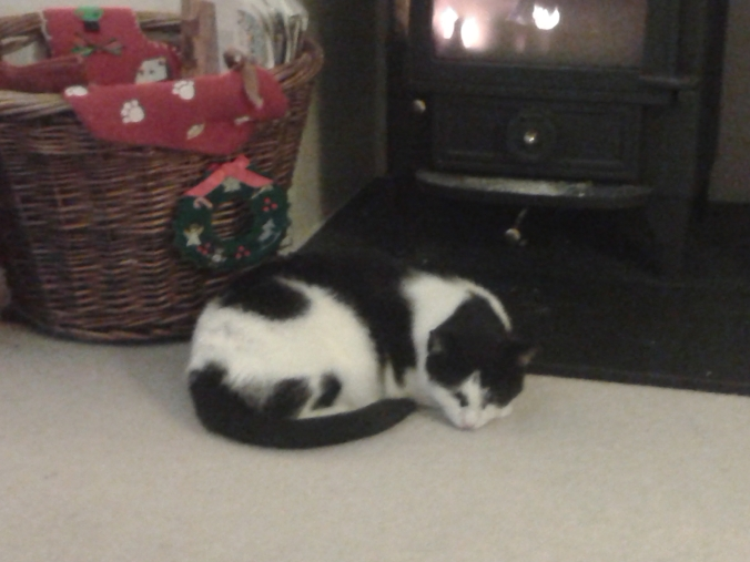 There's a fire and a cat and Christmas colours - all will be well...